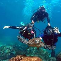 Mergulho Batismo-Búzios - Saindo do Rio de Janeiro