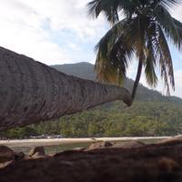 Trekking - Volta Completa da Ilha Grande (7 dias)
