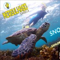 Snorkel (Mergulho de Superfície)