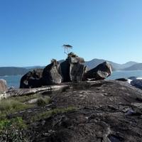 Trilha das 7 Praias em Ubatuba-SP