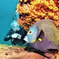 Mergulho com Cilindro em Arraial do Cabo, RJ